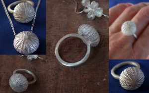 Whole, tiny sea urchin pod ring.  Never fear, it's original owner was finished with it when I found it.